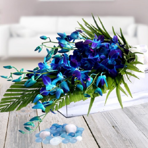 Bunch Of Blue Orchids1