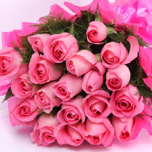 Bunch Of 20 Pink Roses1