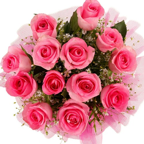 Bunch Of 20 Pink Roses14